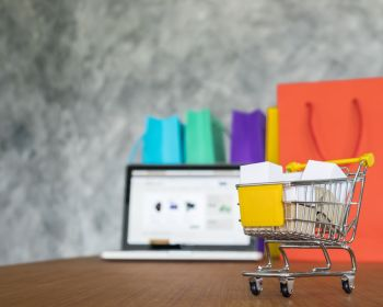 Laptop And Shopping Bags Online Shopping Concept
